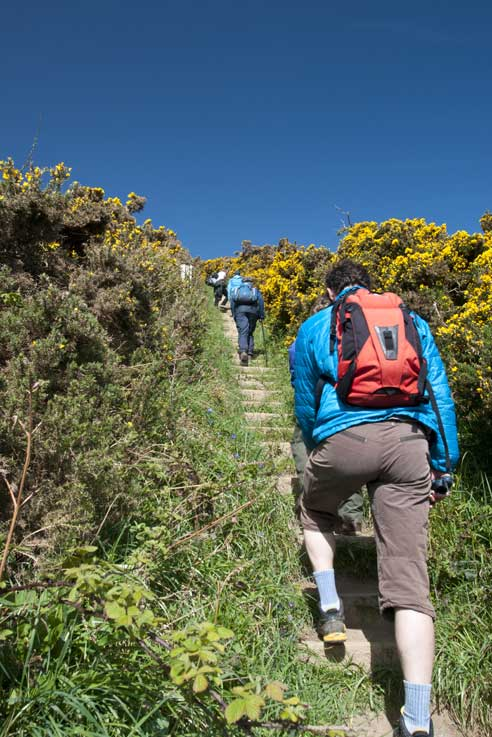The Great South West Coast Path Walk
