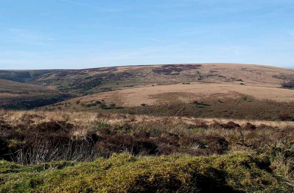 A Guide to Holidays in Exmoor