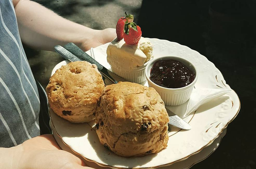 Woods make a splendid cream tea and are based in Cardinham Woods in north Cornwall.