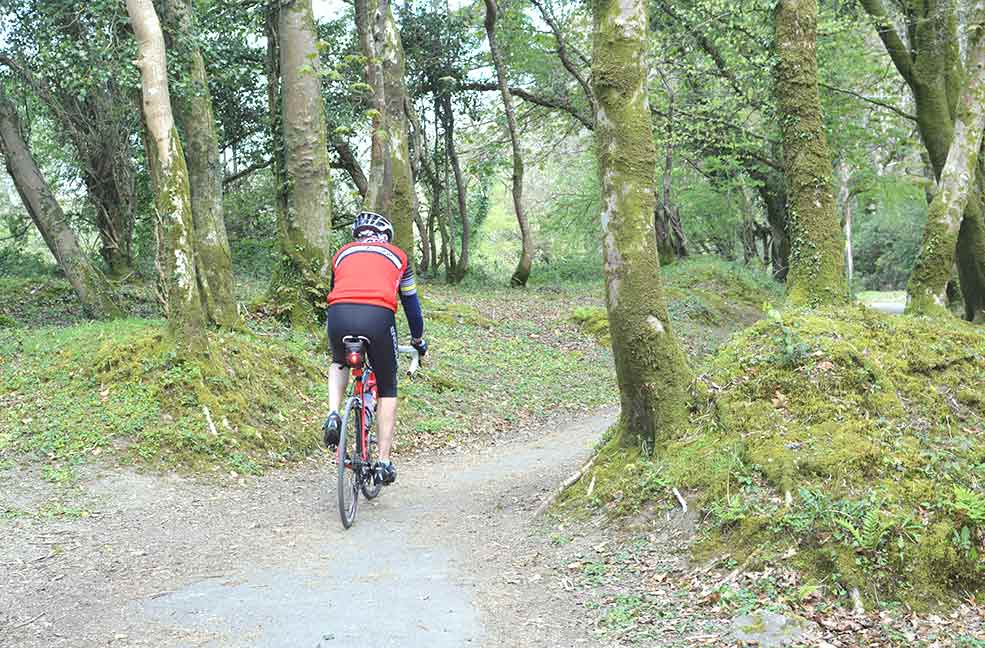 The flat paths and pretty routes make for great cycling on the West Devon way.
