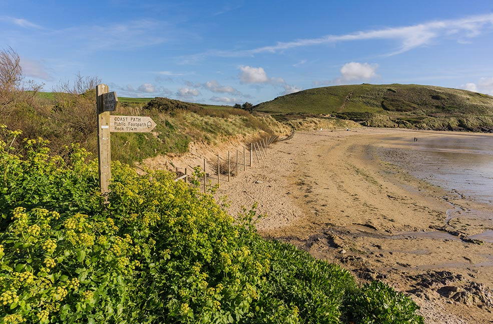 The golden sands of Daymer Bay welcome dogs all year round including throughout the summer in Cornwall.