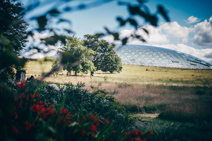 A visit to the Botanical Gardens in Carmarthenshire