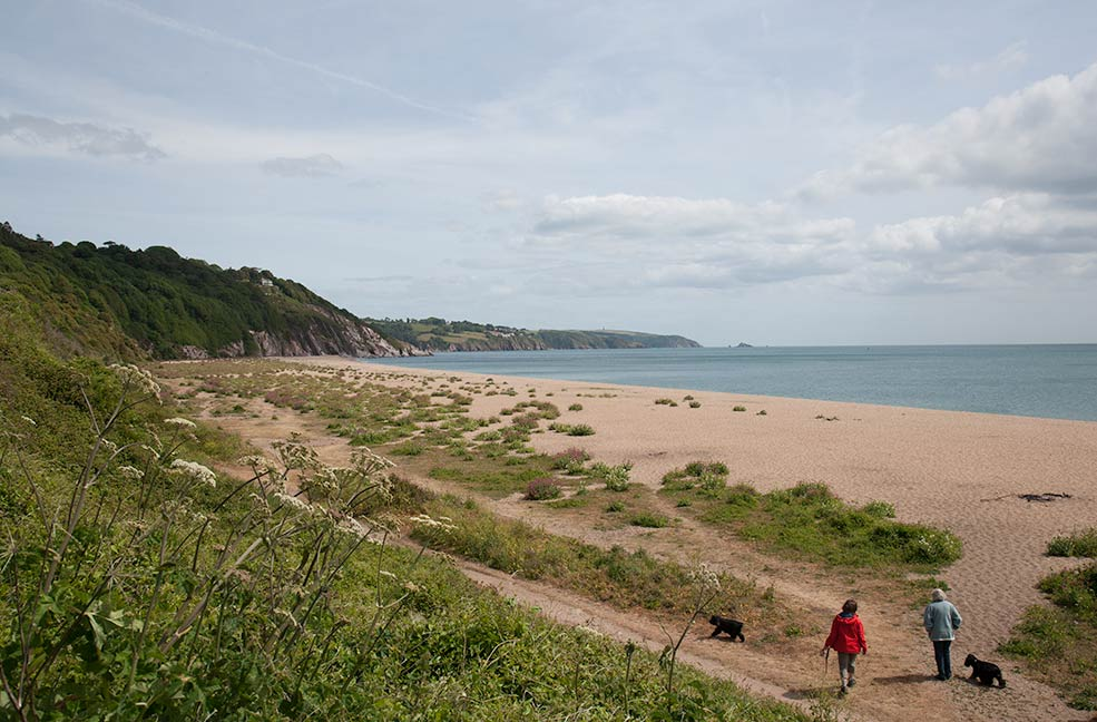 5 Best dog friendly beaches in Dorset