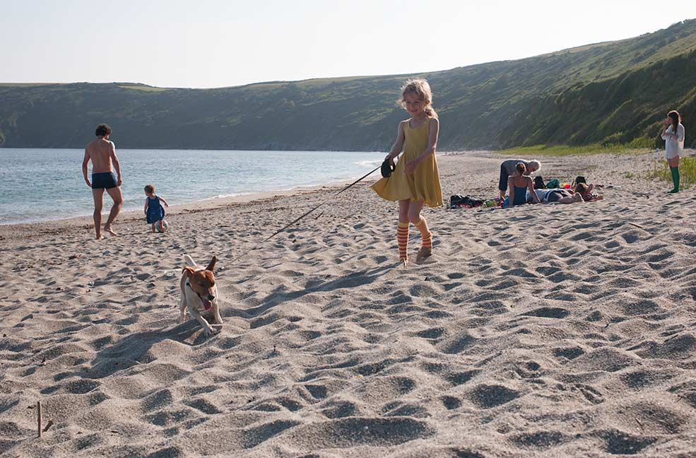 Top 5 dog friendly beaches in Cornwall