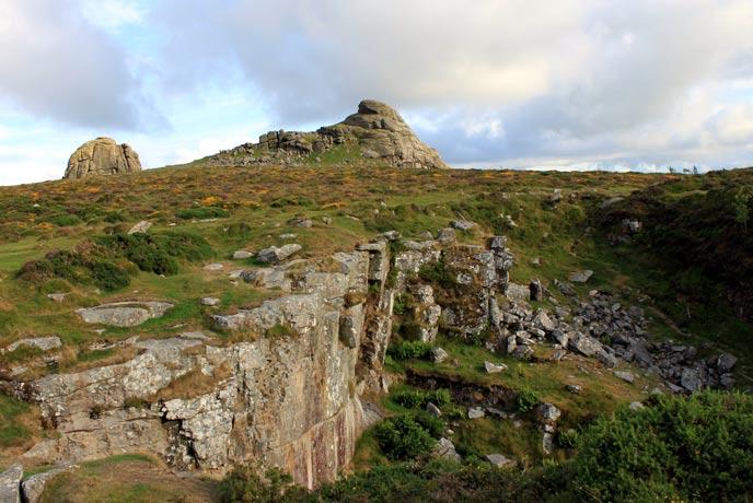 Dog walks on Dartmoor