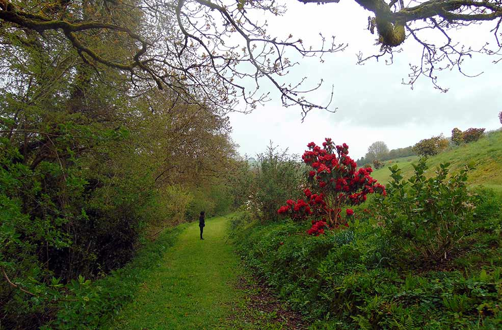 The pretty paths meander through woodland opening up to spectacular views of south Devon valleys.