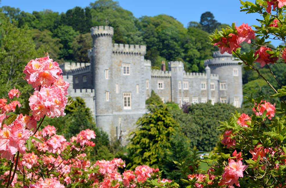 Caerhays Castle and gardens in Cornwall have an amazing collection of plants from all around the world.