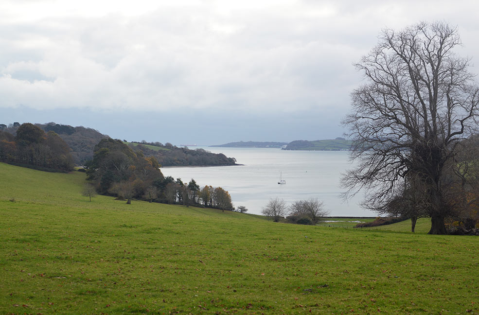 Trelissick estate has a formal garden that is kept and cultivated but also has some lovely fields that sit along the Carrick roads near Falmouth.