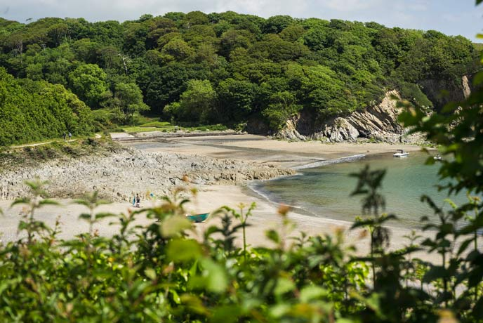 Walk down to Polridmouth from the car park near Menabilly.