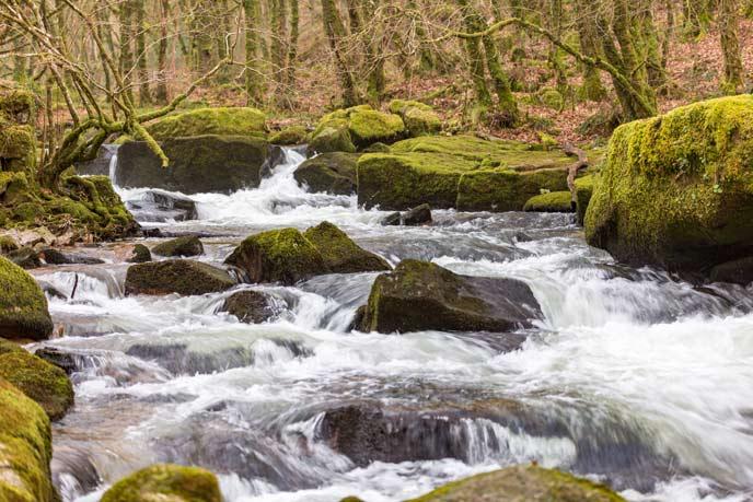 Golitha Falls, Cornwall