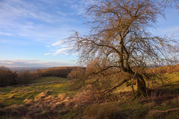 Dovers Hill, Cotswolds