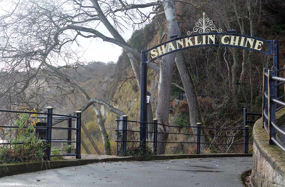Shanklin Chine is a beautiful home of the Isle of Wight's red squirrels.