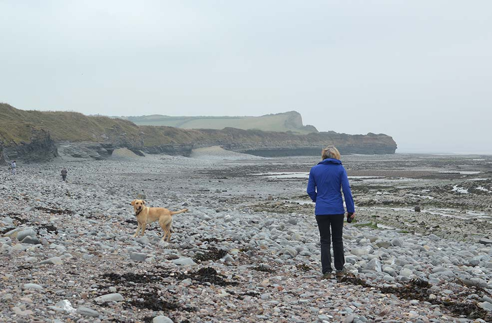 Off we go along the stones at Kilve beach in Somerset