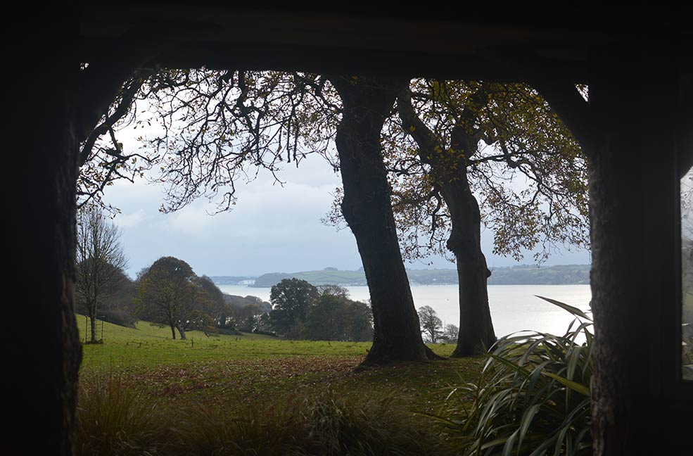 A view through the woods at Trelissick gardens in Cornwall
