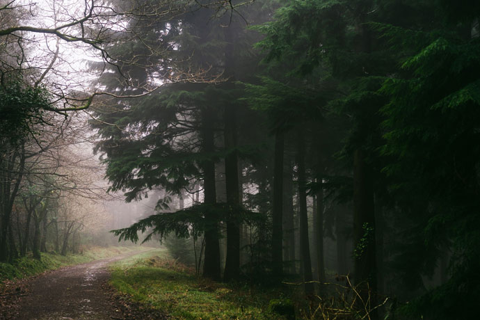Top 10 winter walks in Cornwall