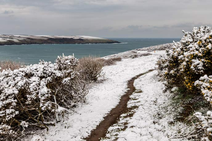 Snowy coastal path, Pentire, Newquay