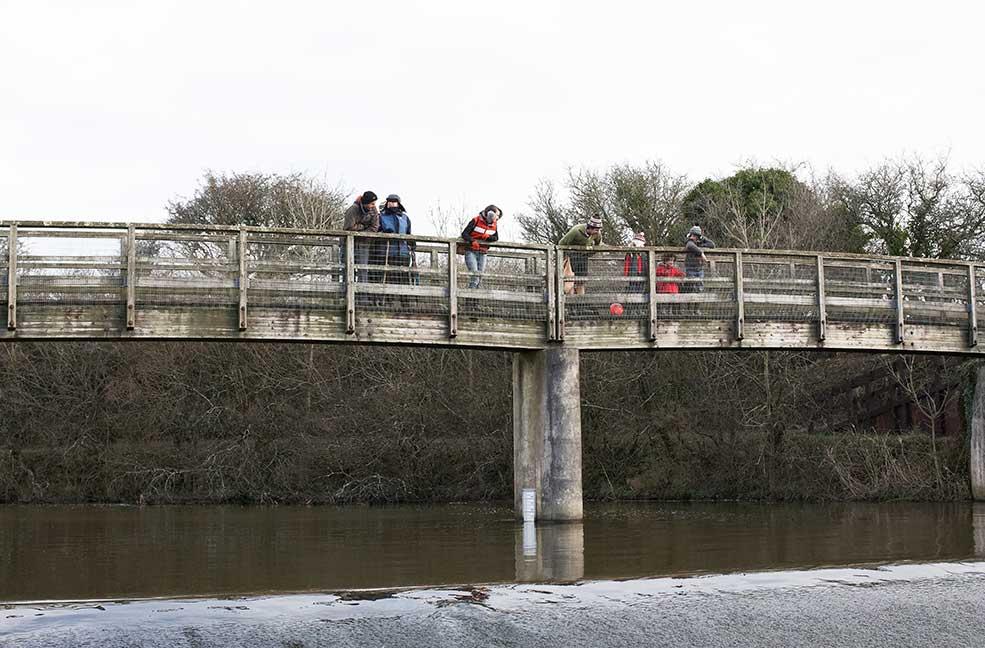 Bude Aquaduct bridge where pooh sticks start