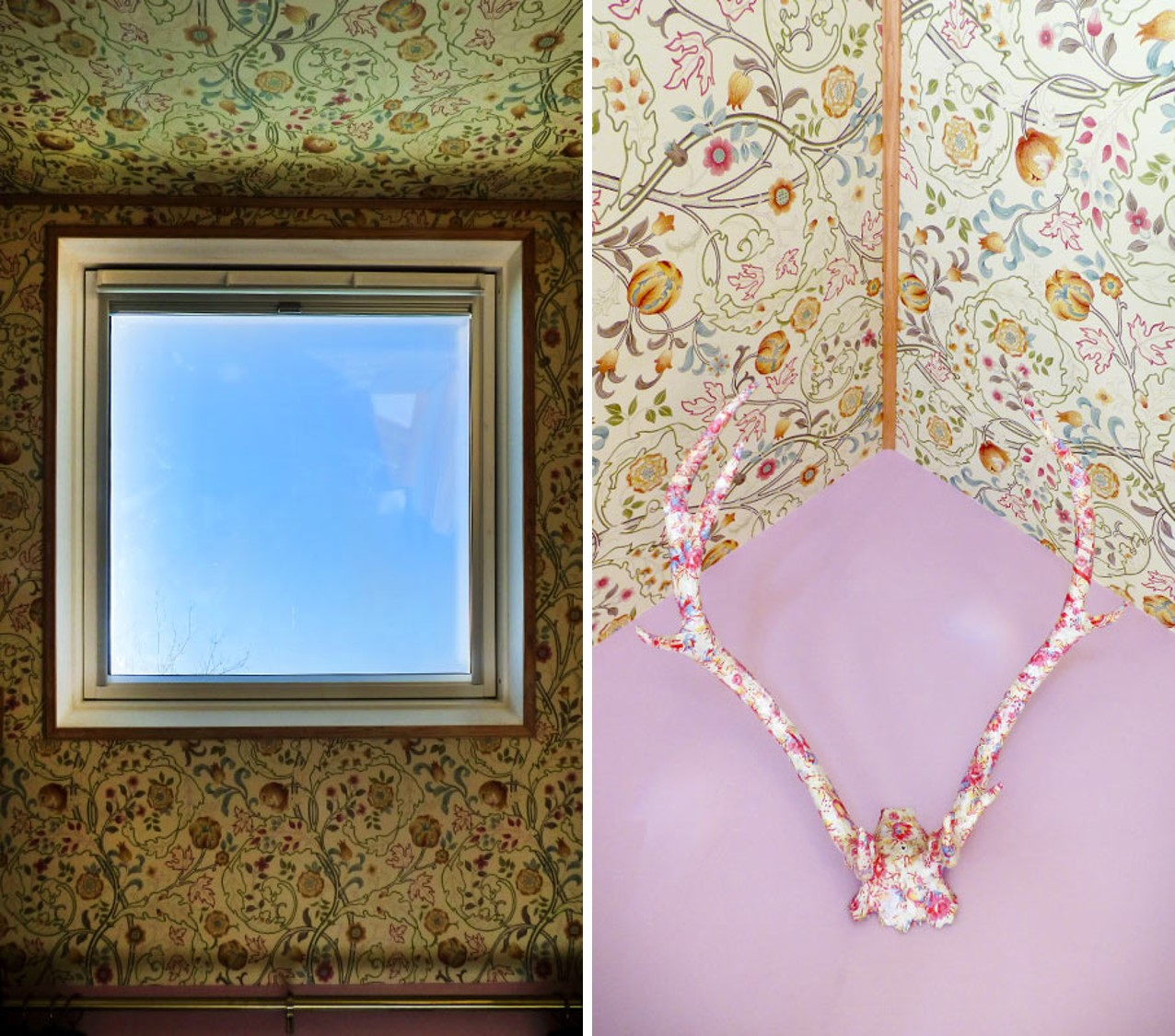 William Morris ceiling and Observatory stag head