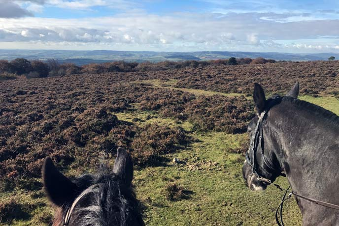 The views over the Quantock hills on a pony trek