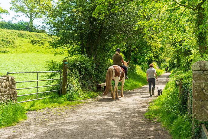 Pony trekking in the Quantocks allows you to see the landscape from a totally new angle.