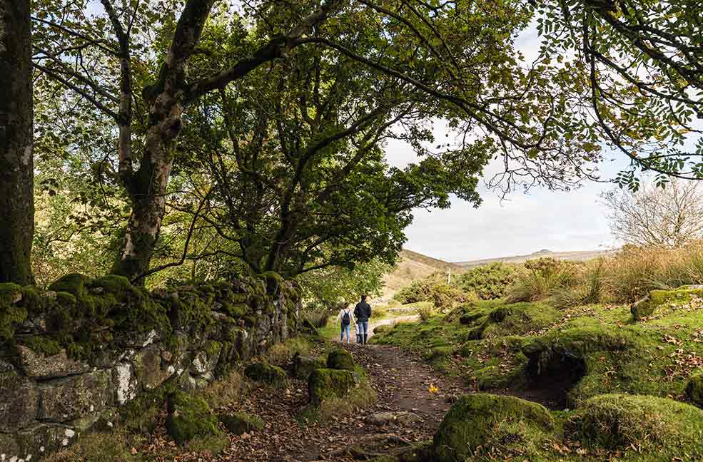 Walking the trails and path through the stunning scenery of Dartmoor.