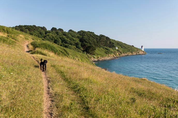 4 ways to stay active on your Cornish holiday
