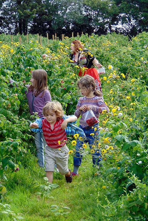 Go fruit picking with all the family this spring and summer.