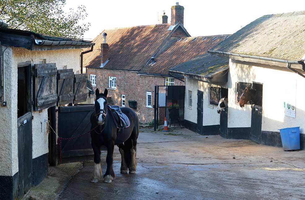 Quantock trekking stables in West Bagborough, Somerset.