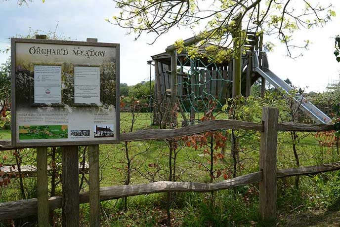Orchard Meadow play area in Tolpuddle