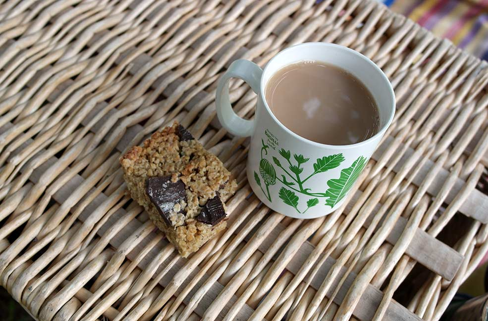 Tasty flapjack and a cup of tea to end our tree climbing session on the Isle of Wight.