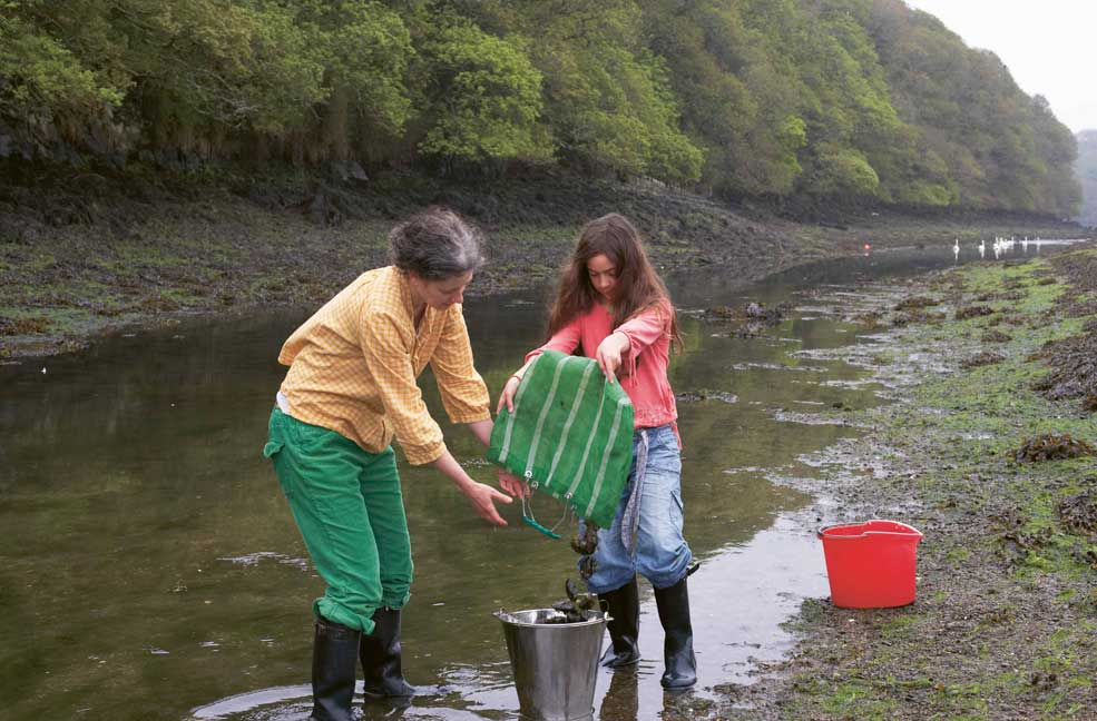 'Alive, alive oh', up a creek, Helford, south west Cornwall