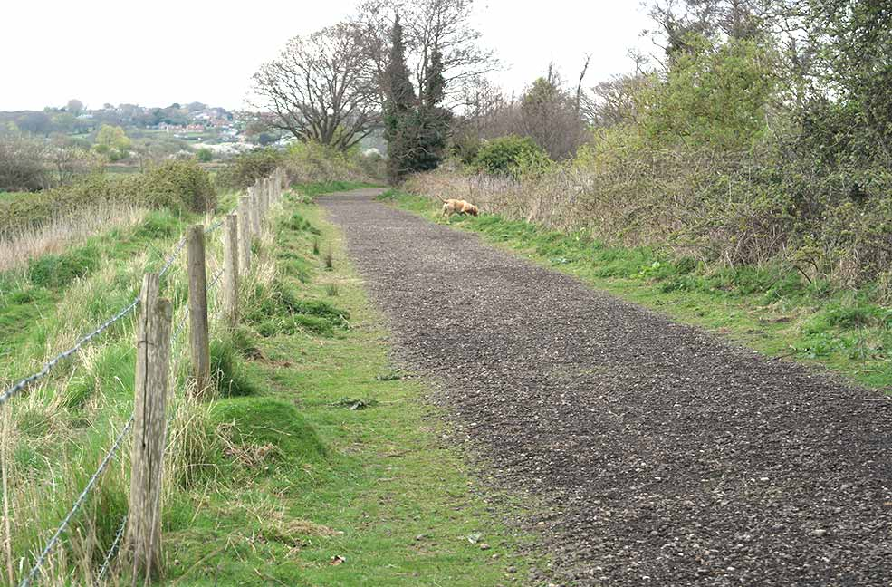 The paths around Brading Marshes are relatively flat, made for easy walking.