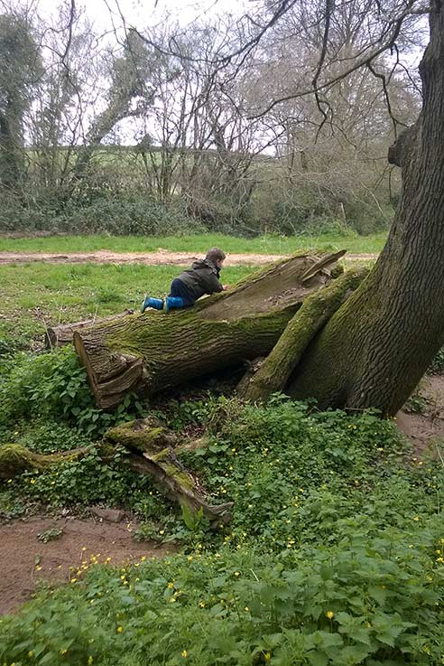 Benji getting to grips with nature