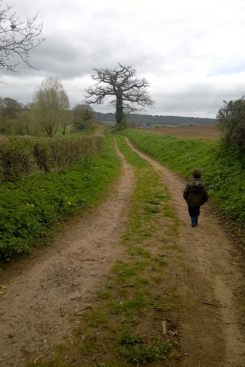 Exploring the local lanes