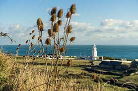 Autumn events on the Isle of Wight