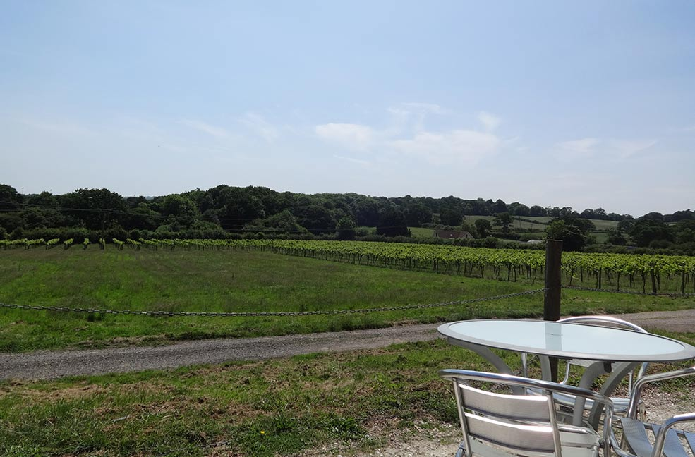 Stop for a while and watch the world pass by in this peaceful vineyard on the Isle of Wight.