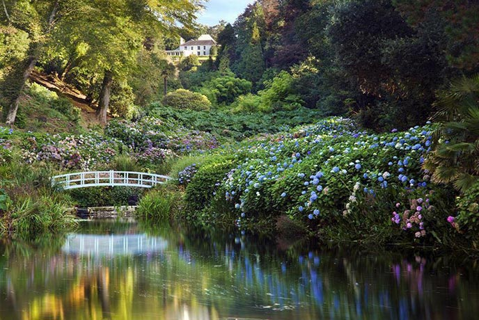 The gorgeous gardens of Trebah are open to the public daily.