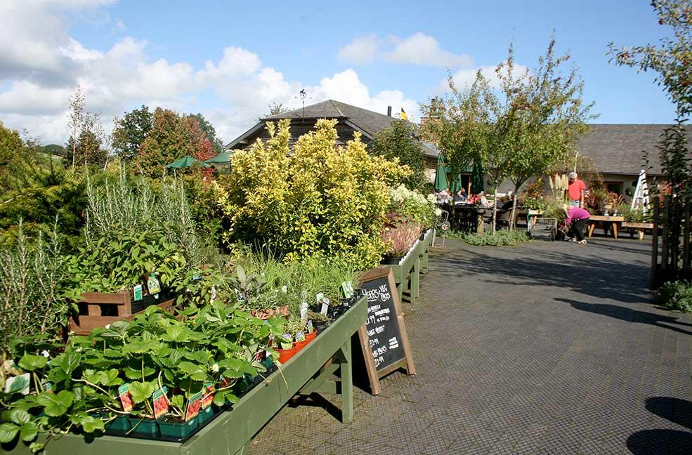 Duchy Nursery Garden Centre