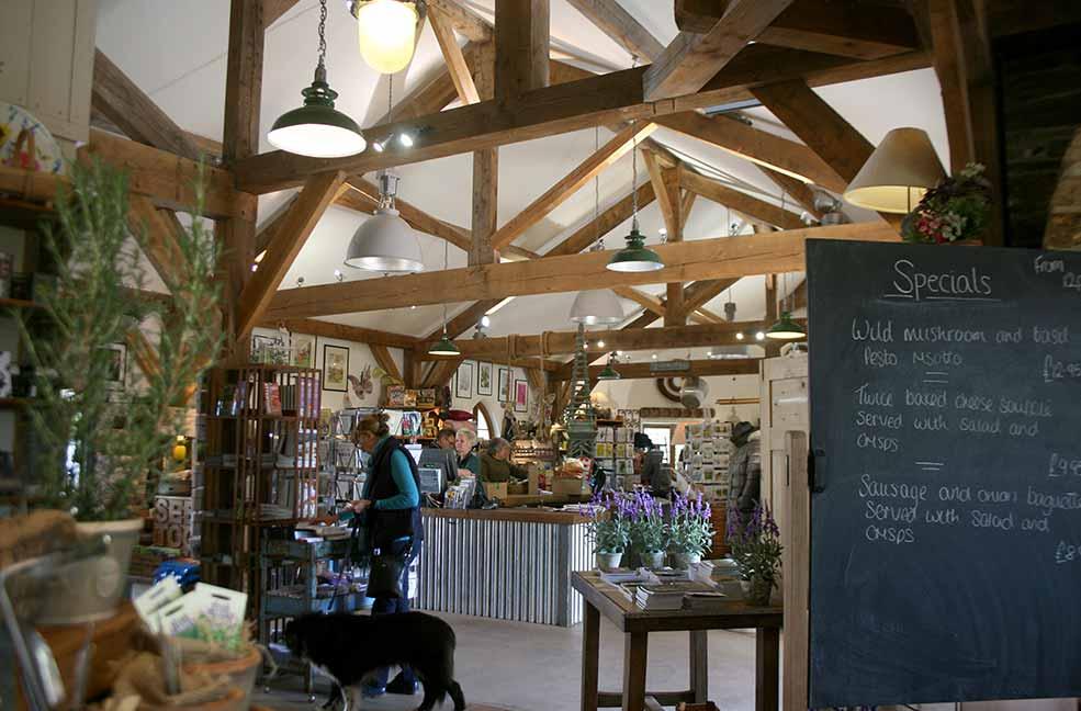 Duchy of Cornwall Nursery: Eat, shop and dog walk