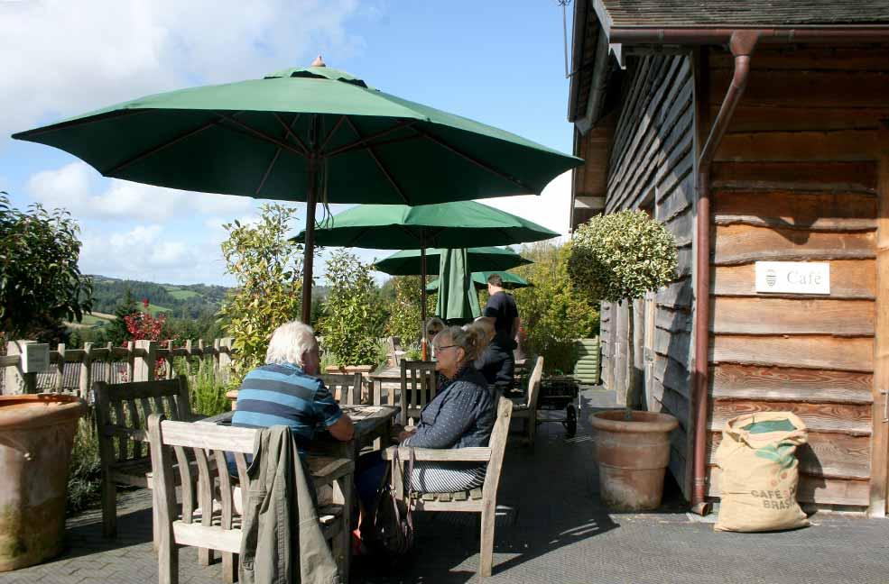 Duchy Nursery terrace