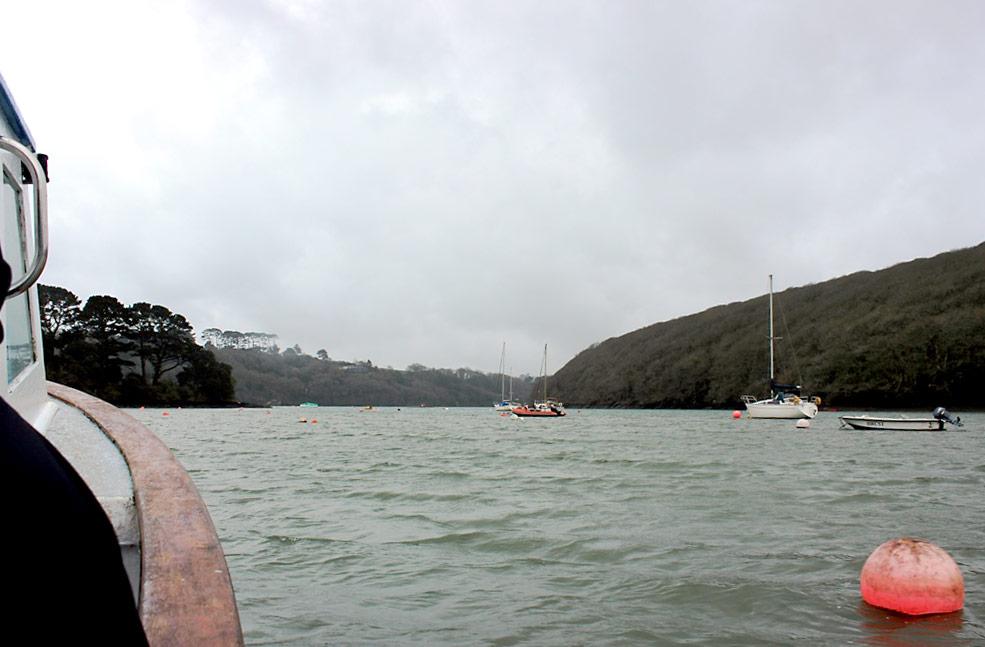 Helford boat trip