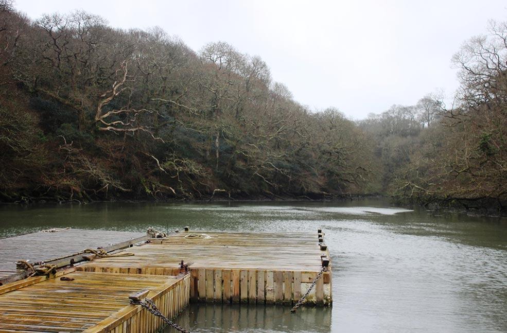 Helford river boat trip