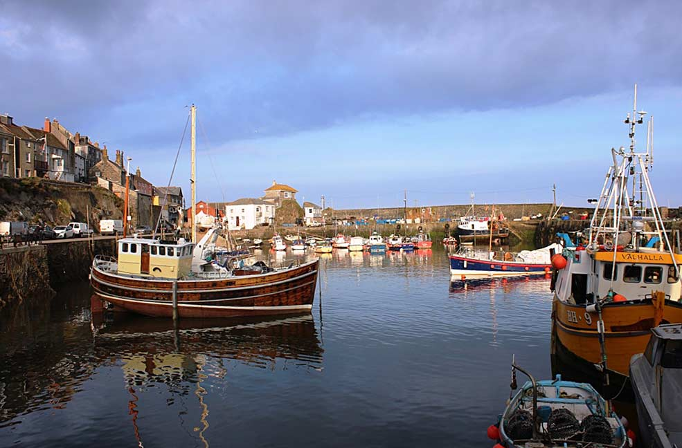 Things to do in Mevagissey