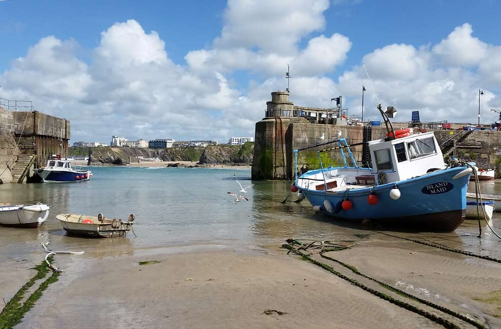 Newquay harbour by Dune Dreams