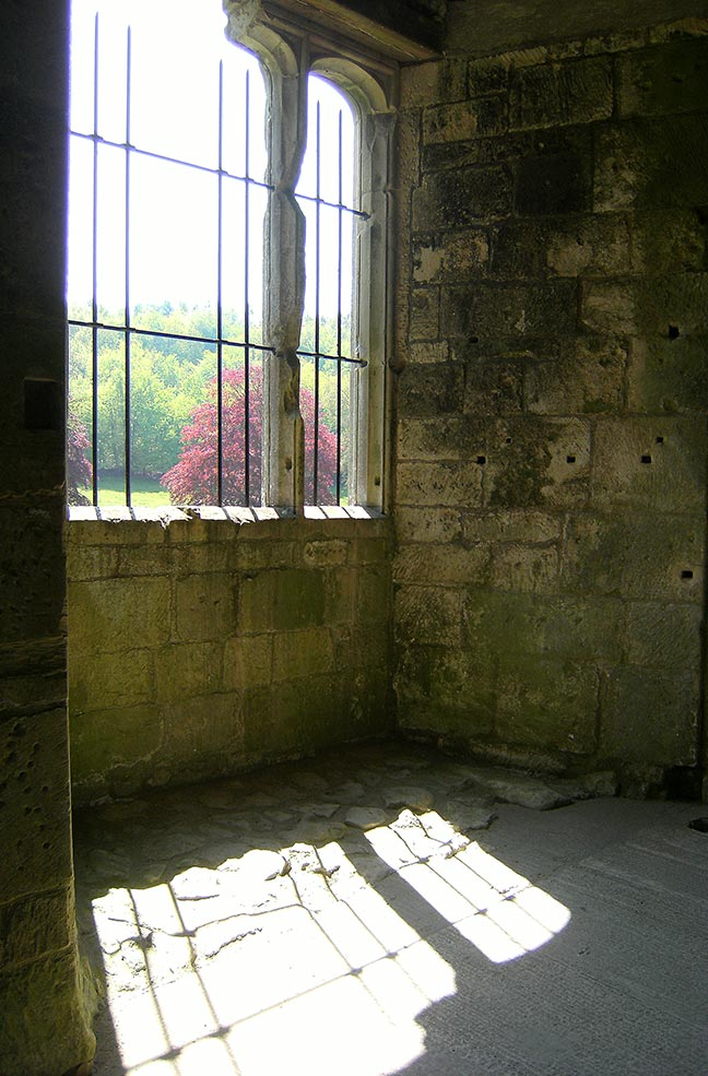 Autumn colours through the window