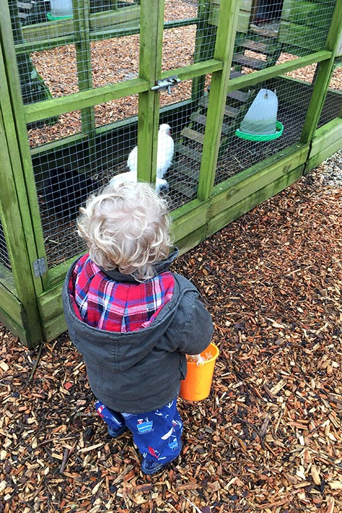 Egg collecting at Pennywell