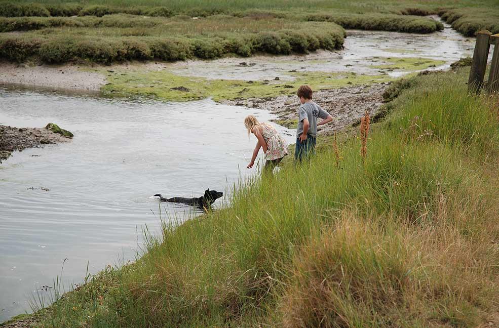 Hengistbury Head dog walk