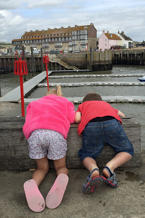 Finding crabs
