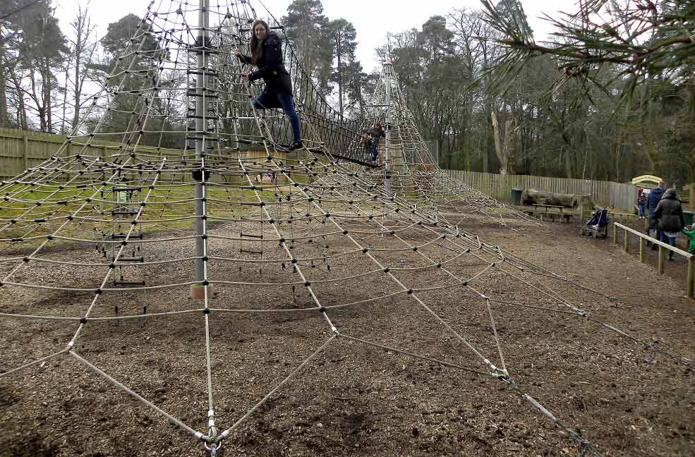 New Forest play park