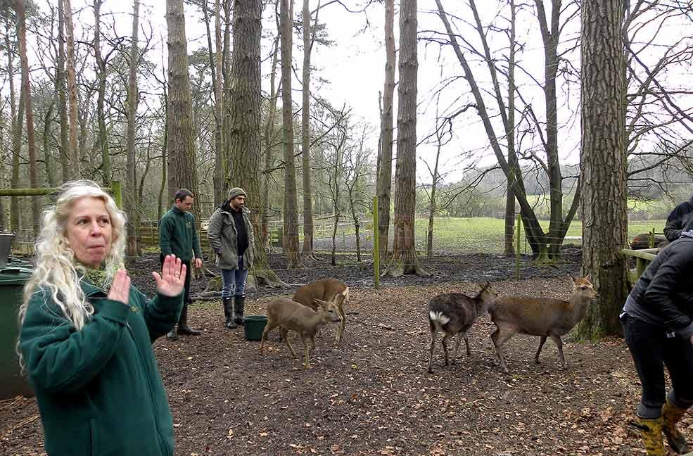 Wildlife talks